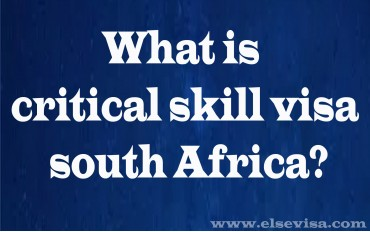 What is critical skill visa south Africa?