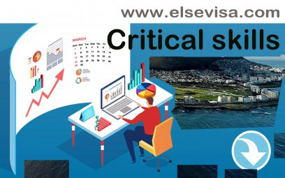 Critical skills work visa