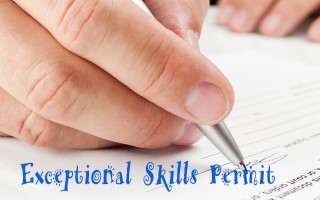 Exceptional Skills Permit | south african work visas permits | Else Visa