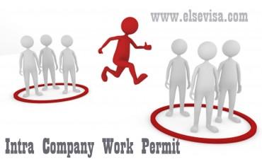 Intra Company Work Permit