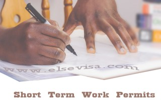 Short Term Work Permit | South Africa Critical Skills Visa | Else Visa