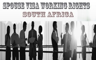 Spouse Visa Working Rights | South Africa Critical Skills Visa | Else Visa