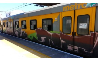 trains in south africa - Else visa south africa