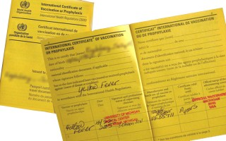 Yellow fever certificate requirements for South African immigrants
